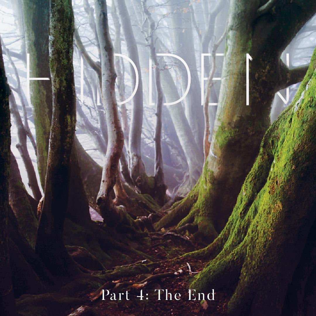 Hidden Part 4: The End